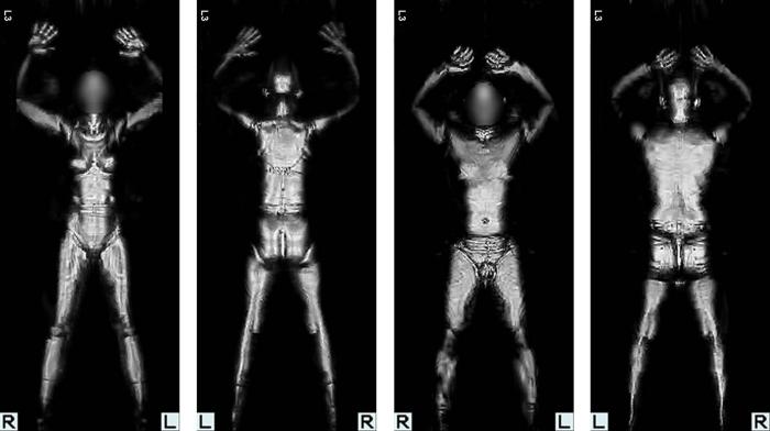 Ron Paul, contra escáneres humanos enaeropuertos